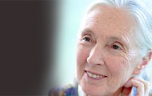 Jane Goodall | March 9, 2011 | Wortham Center, Houston | The Progressive Forum